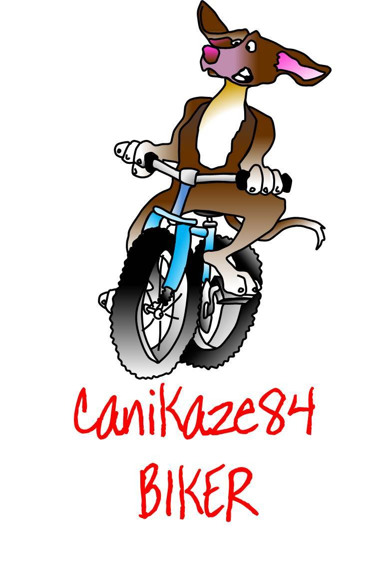 Canikaze bikerr